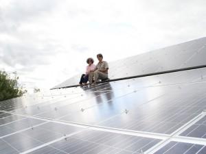 Sustainability at Littledeer